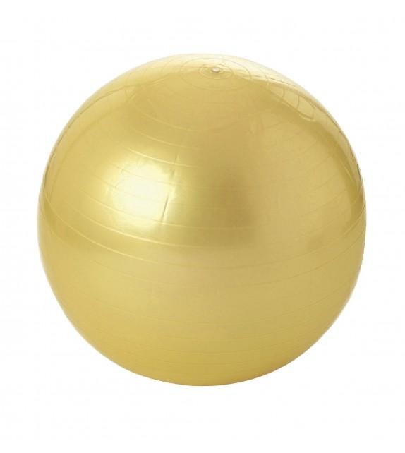 Balle gymnique 55 cm - jusqu'à 300kg